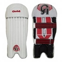 Picture of Wicket Keeping Pad CA Gold
