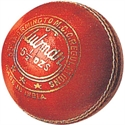 Picture of Cricket Ball Gunn & Moore Club Man Leather