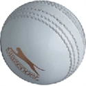 Picture of Cricket Ball Slazenger ODI Tainging Ball Yths