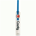 Picture of Cricket Bat County World Record Twin Scoo
