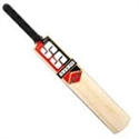 Picture of Cricket Bat Sunridges Soft Pro