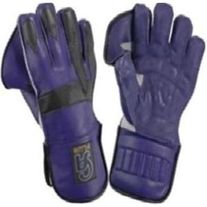Picture of Wicket Keeping Glove CA Plus