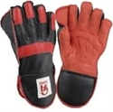 Picture of Wicket Keeping Glove CA Somo
